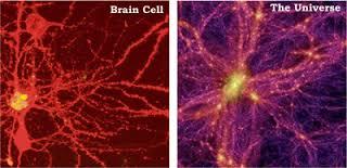 galaxy-cells